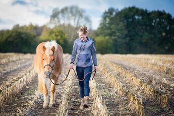 Pferd und Reiterin spazieren nebeneinander auf einem Soppelfeld