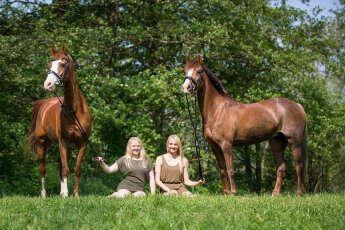 Zwei Reiterinnen hocken im Gras und halten links und rechts ihre beiden Pferde