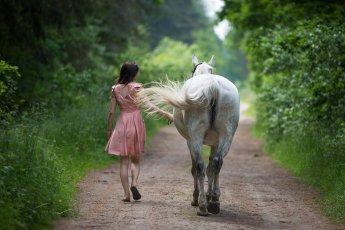 Von hinten fotografiert: Reiterin führt ihr Pferd einen Waldweg entlang