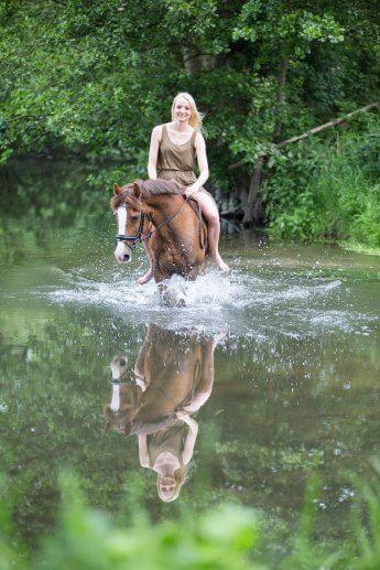Starke Bildidee: Pferd und Reiter stehen in einem Teich, in dem sich beide zusätzlich spiegeln