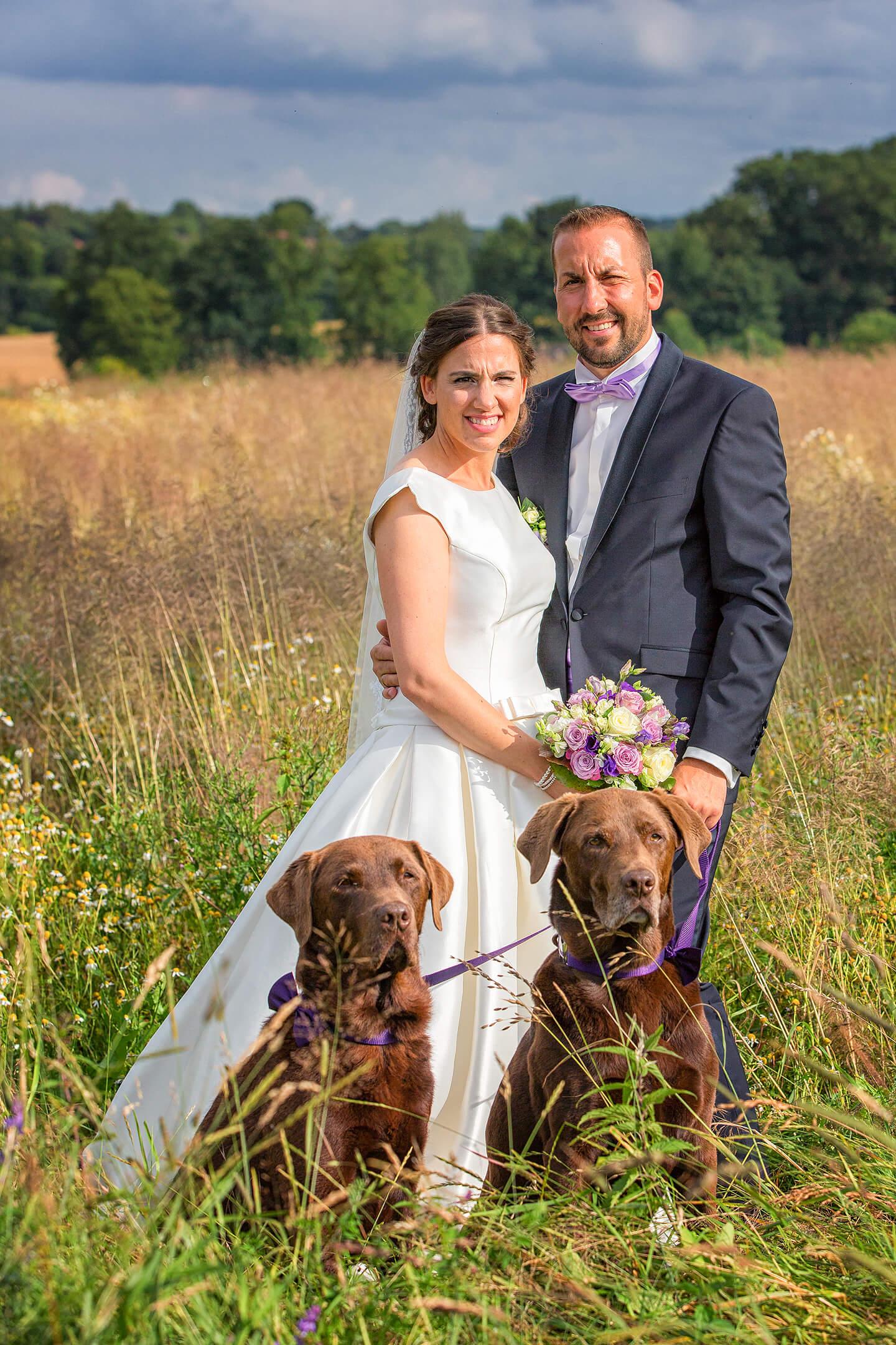 Hochzeitsfoto mit Hunden