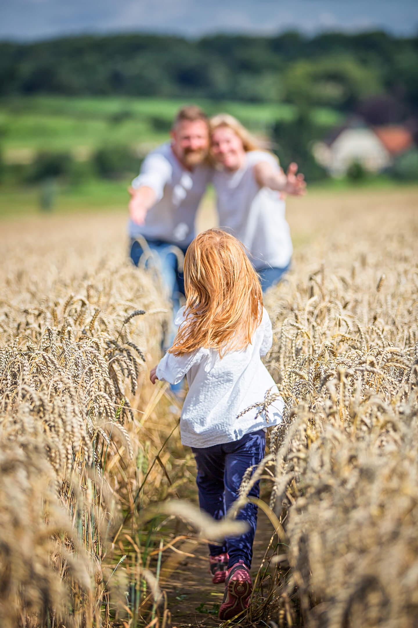 Eines von vielen Familienfotos im Kornfeld: Tochter rennt auf Eltern zu