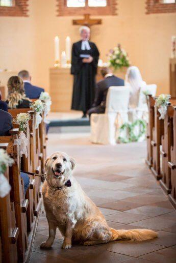 Der Bräutigam trägt seine Braut im weißen Kleid auf Händen