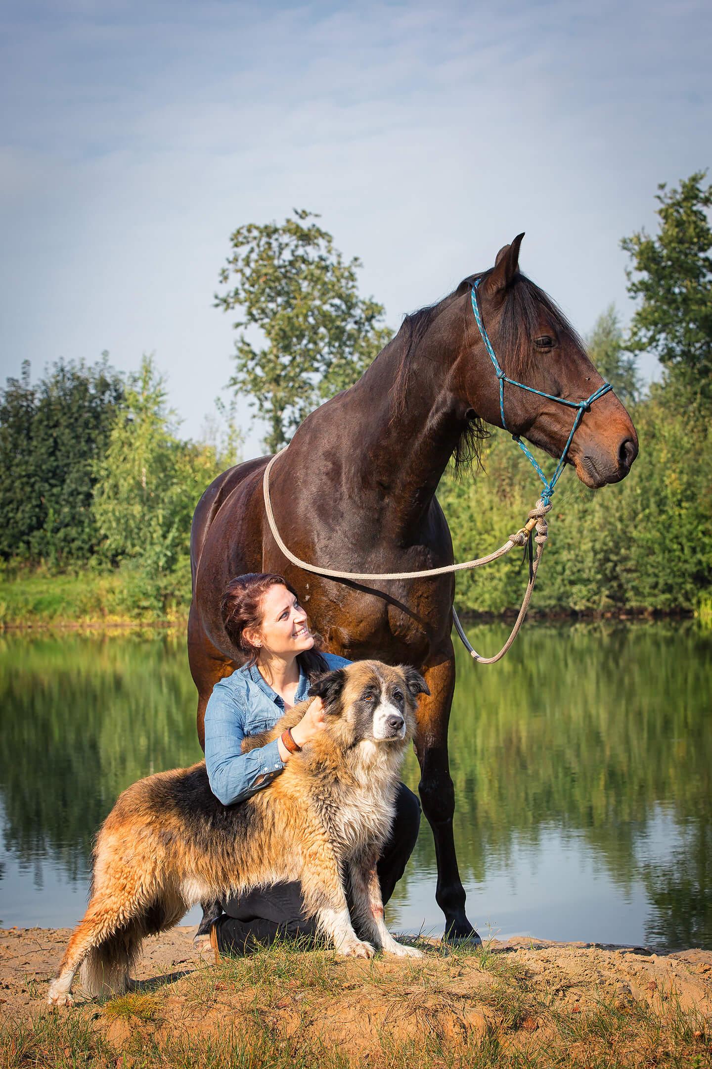 Pferde-Fotoshooting mit Reiterin und Hund
