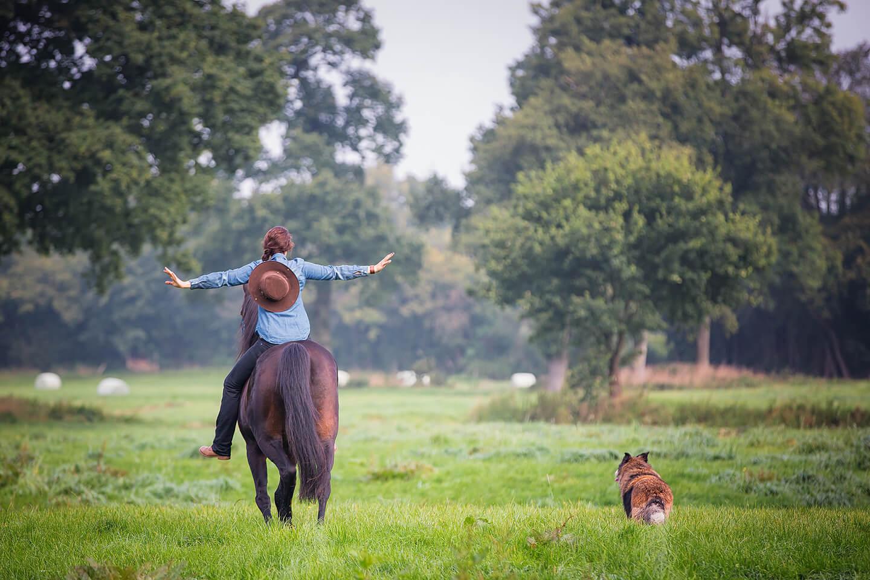 Reiterin mit Cowboy-Hut auf dem Pferd von hinten fotografiert