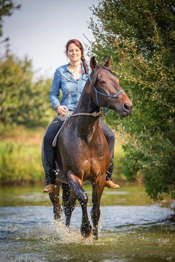 Pferd und Reiterin im flachen Wasser beim Fotoshooting
