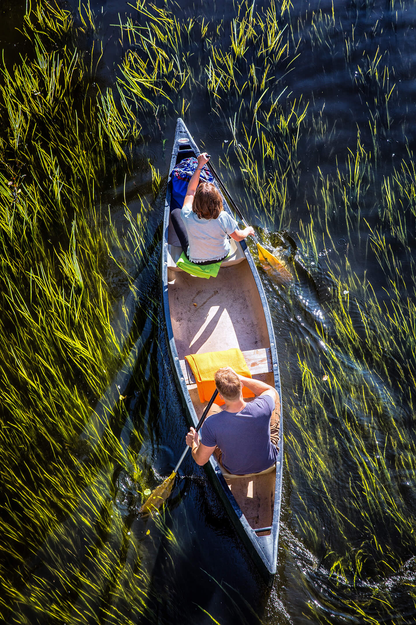 Naturfoto Kanufahren auf der Spree