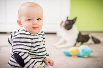 Homeshooting mit einjährigem Baby und Hund im Hintergrund