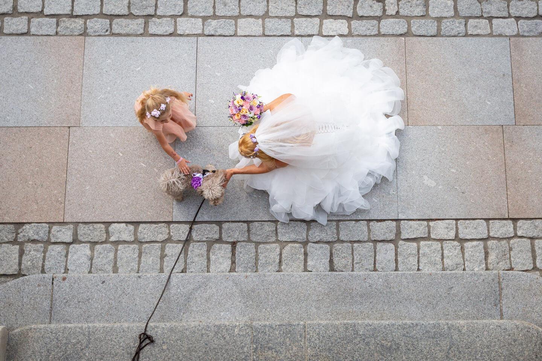 Braut mit Hund und kleinem Mädchen aus der Vogelperspektive fotografiert