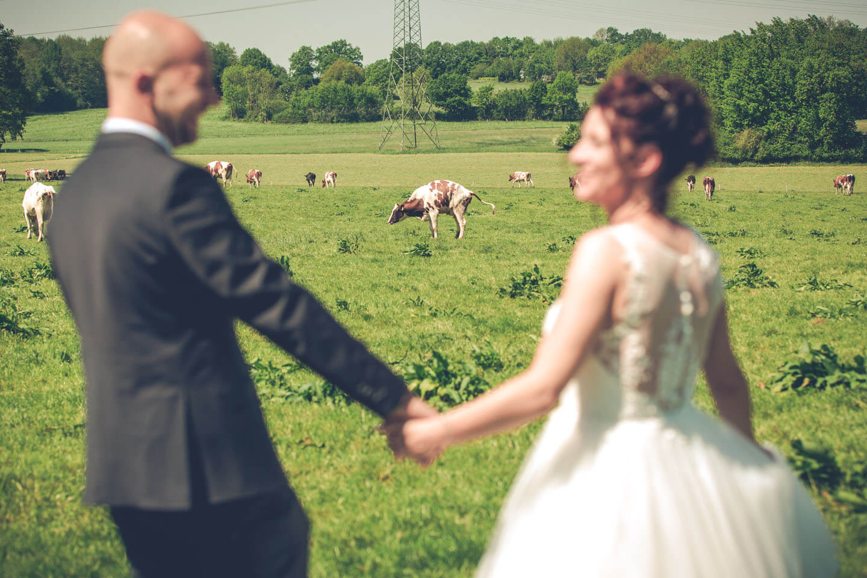 Outtake Hochzeitsfoto im Grünen mit Kuh