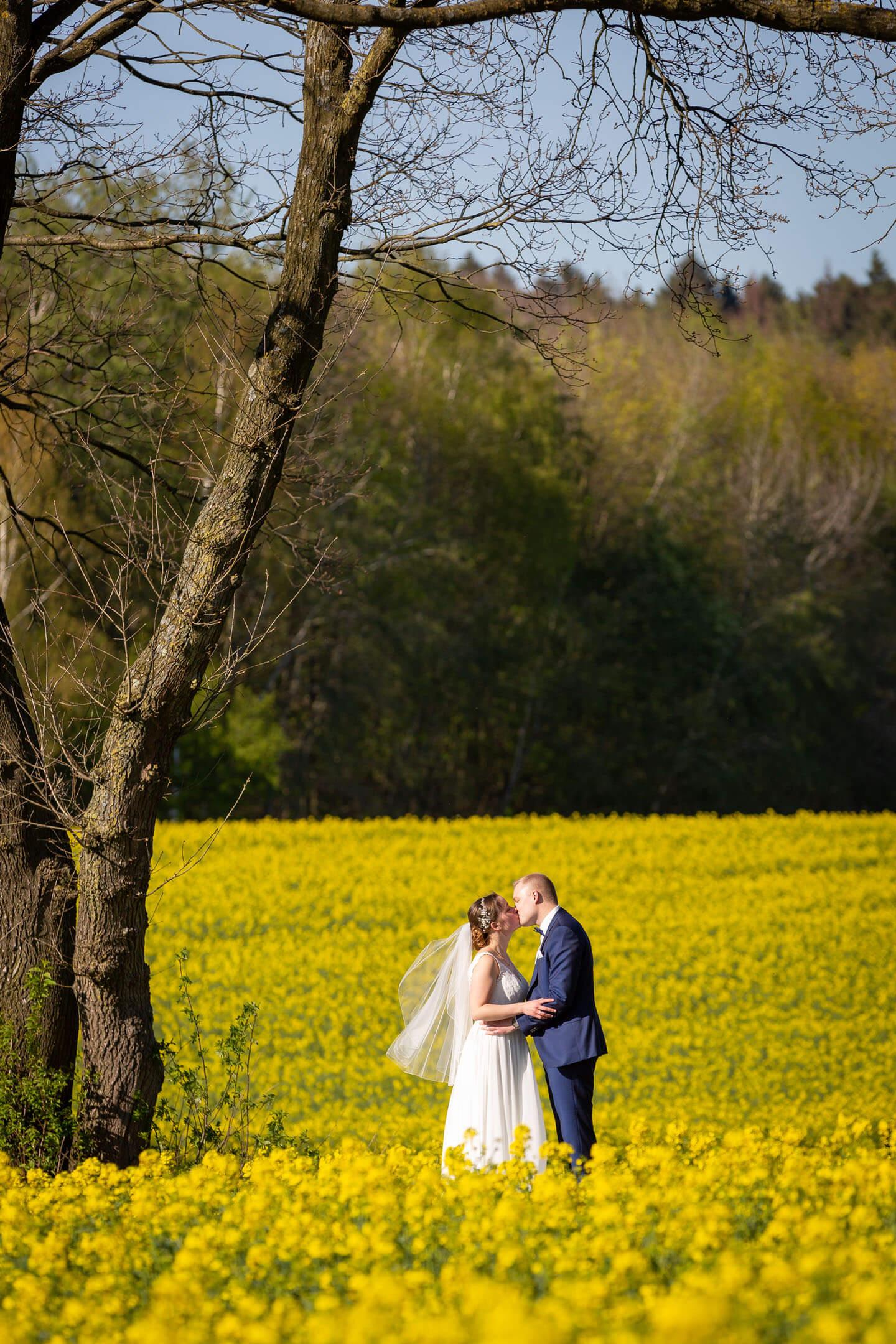 Hochzeitsfoto Rapsfeld