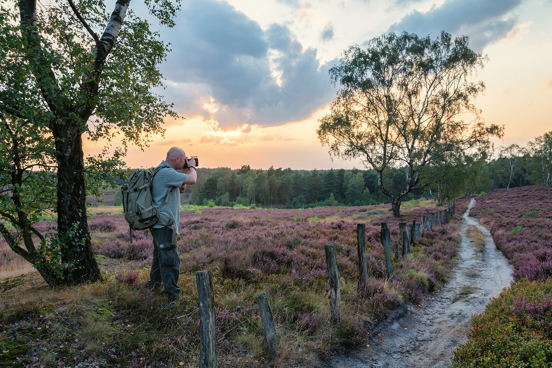 Heide fotografieren mit dem Fotograf Florian Läufer