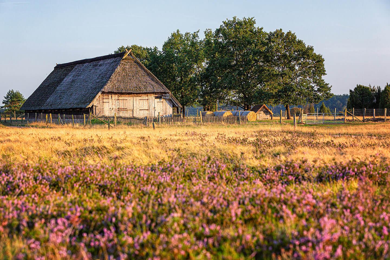 Heidschnuckenstall in der Lüneburger Heide