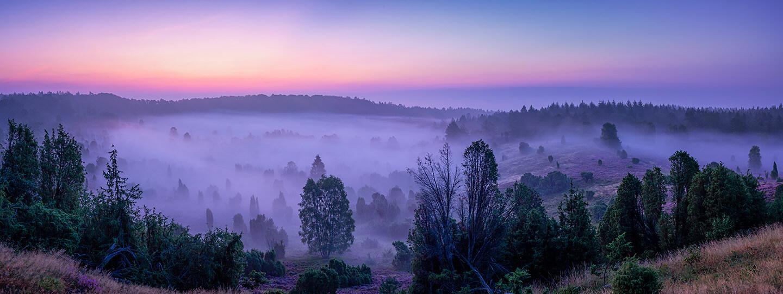 Heide fotografieren - Panorama vom Totengrund im Morgennebel
