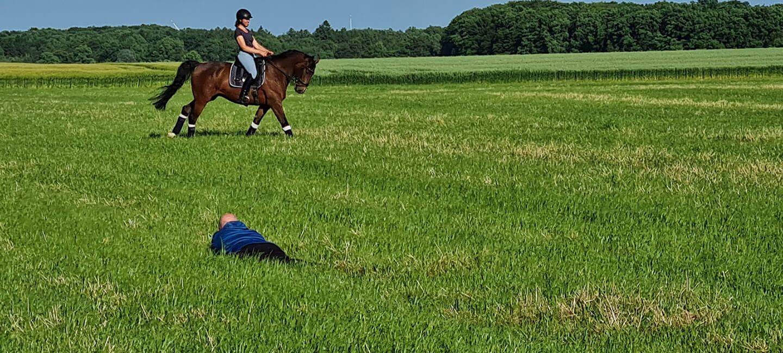 Making of: Pferdeshooting