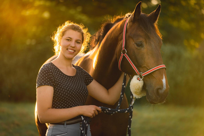 Pferde-Fotoshooting im Licht der untergehenden Sonne.