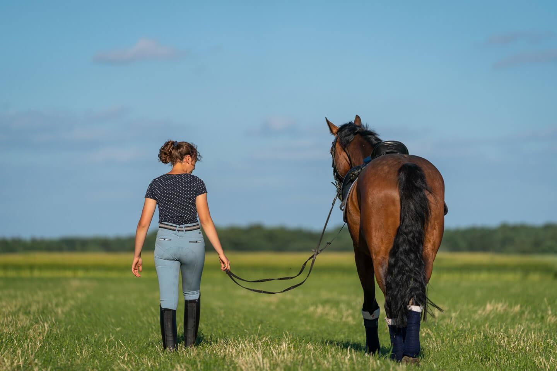 Pferd und reiterin von hinten mit dem Fotoapparat festgehalten.