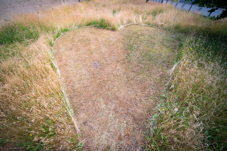 Herz in den Rasen gemäht