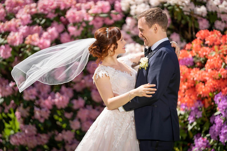 Hochzeitsfoto mit wehendem Schleier vor blühendem Rhododendron.